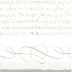 Paquete 20 Servilletas Papel 33 cm Cadence