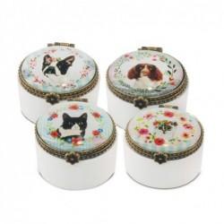Pastillero REdondo Animales Surtido (1 unidad) 4 cm