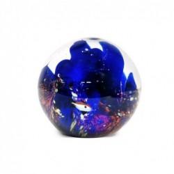 Pisapapeles Peces Azul 8 cm