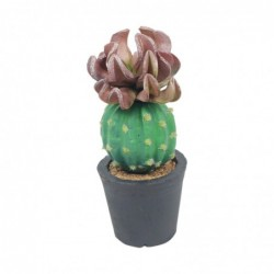 Figura Cactus Decorativa Polietileno 18 cm