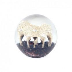 Pisapapeles Cristal Redondo 8 cm