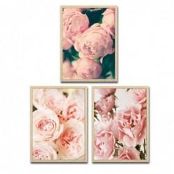 Cuadro Decorativo x3 Rosas 30x40 cm