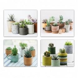 Cuadro Decorativo x6 Cactus 40x50 cm